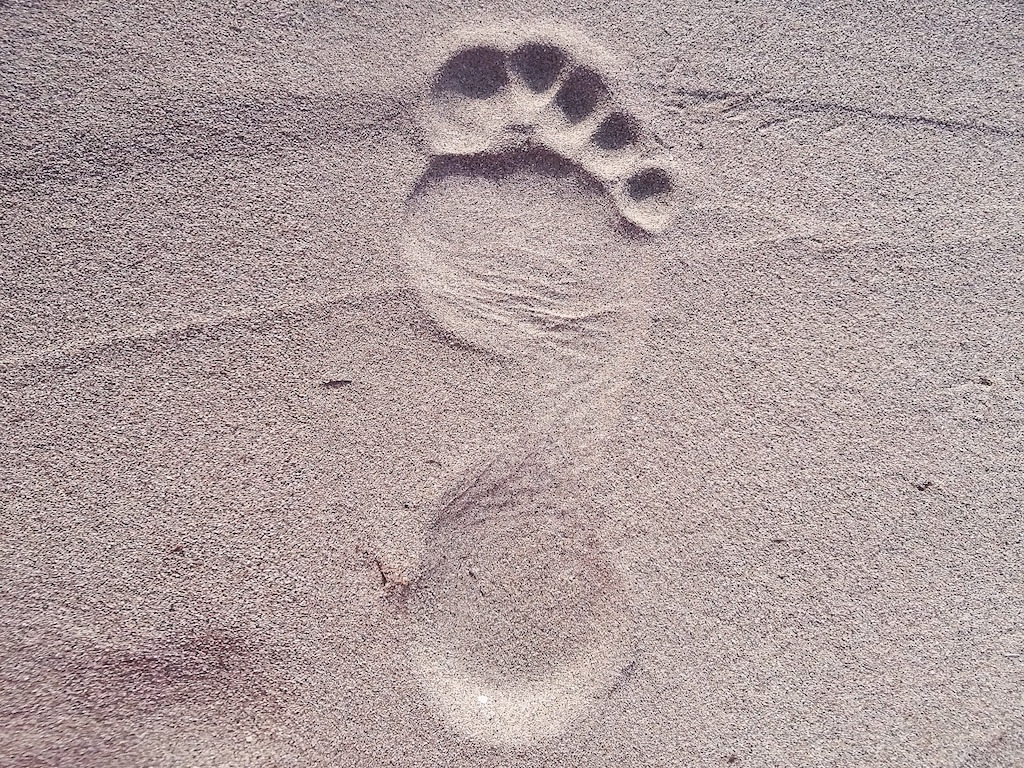 beach-footprint
